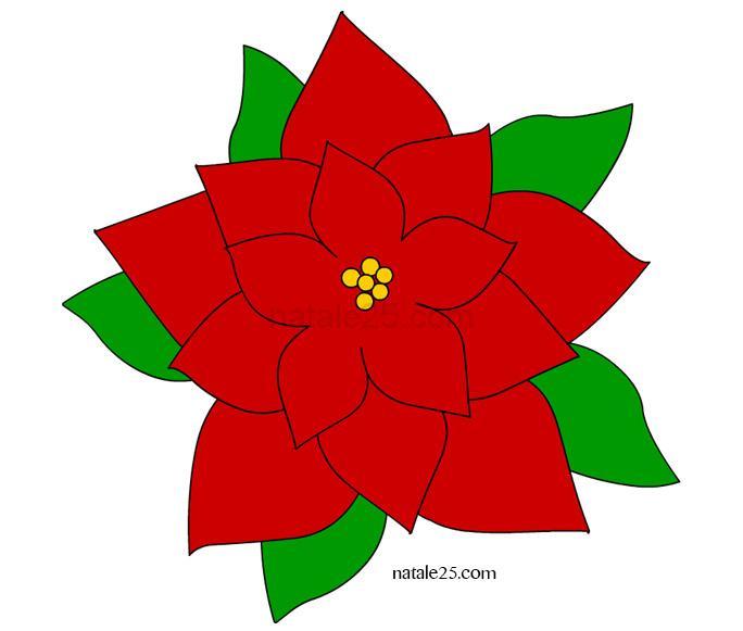 Stella di Natale colorata