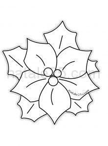 Disegno Stella Di Natale Da Colorare.Stelle Di Natale Natale 25